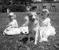 Dog and Girls